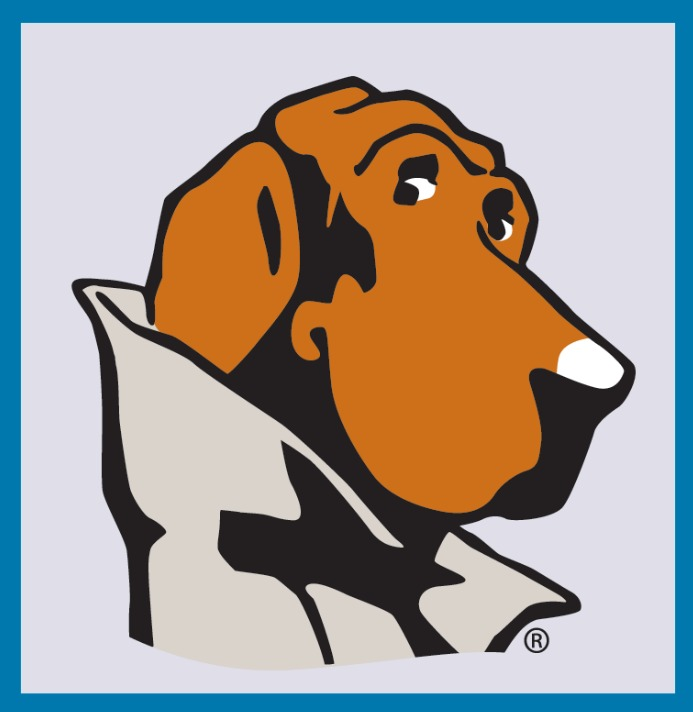 McGruff as he appears on the National Crime Prevention Council's logo.